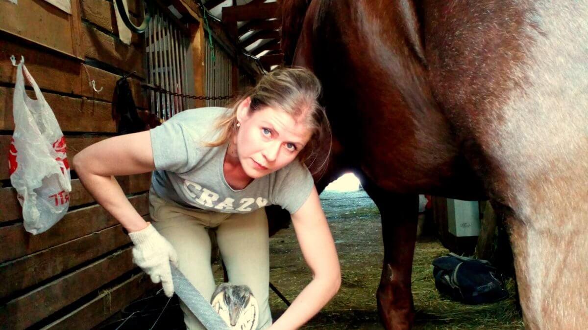 натуральная расчистка копыт лошади