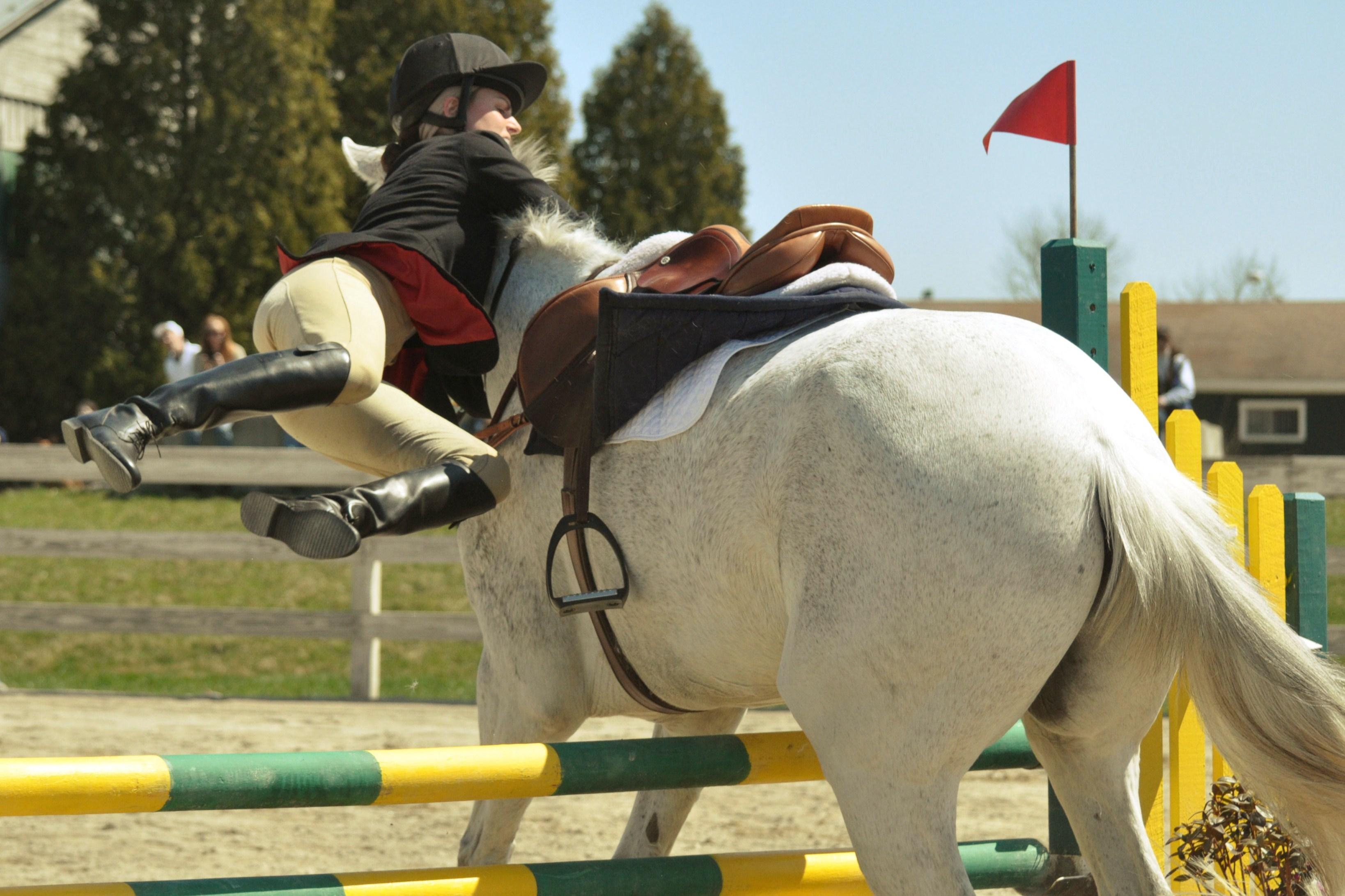 Опасные лошади