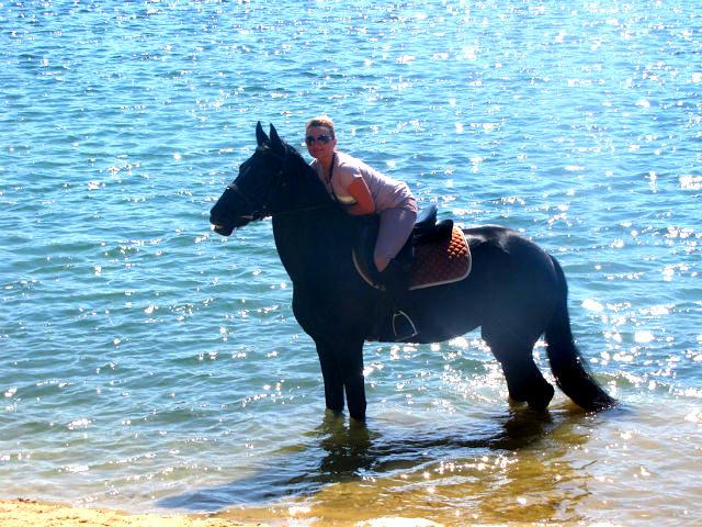 покататься на лошади в москве цена