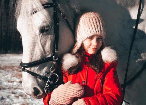 аренда лошади для прогулок